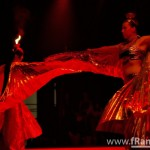 WGT 2009 - Agra - Leuchtfeuer & Suatesh Feuerspectaculum