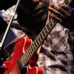 Chicago Blues beim TFF 2009