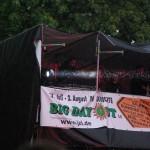 09-08-02_bigdayout_002_festival_800x600