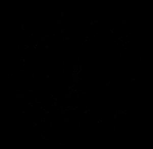 jazzmeile-thueringen-logo