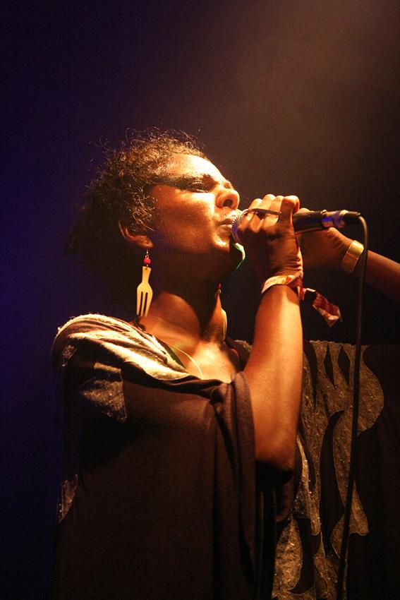 fokus 2010 Festival