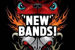 Download-new-bands-2013