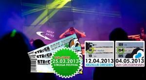 stroga-2013-vvk