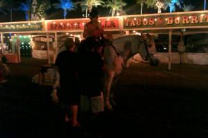 Coachella, Atmo, 2013
