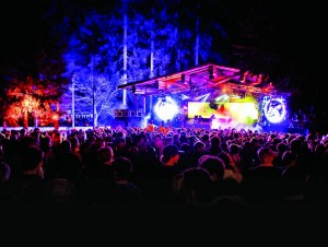 Snowbombing-Forest 2_grad