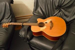 Tims Gitarre _0261