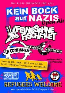 Kein-Bock-Auf-Nazis-Bitterfeld-2015